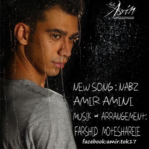 Amir Amini – Nabz
