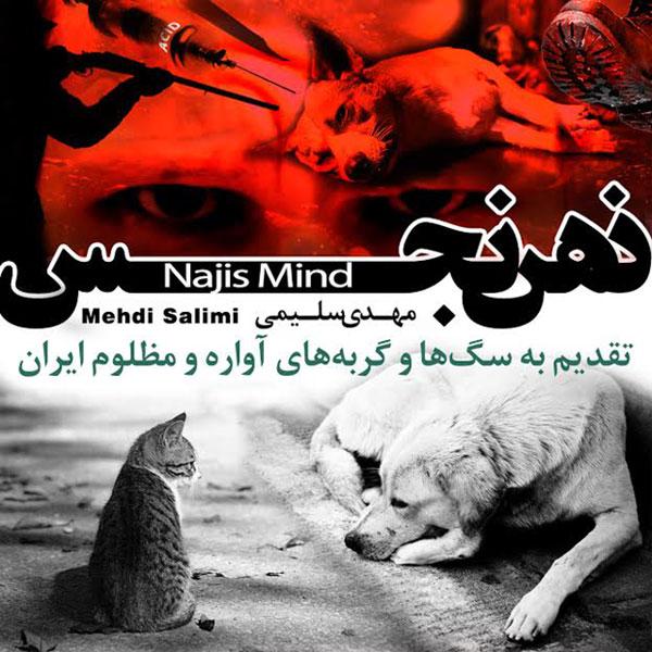 Mehdi Salimi – Zehne Najes