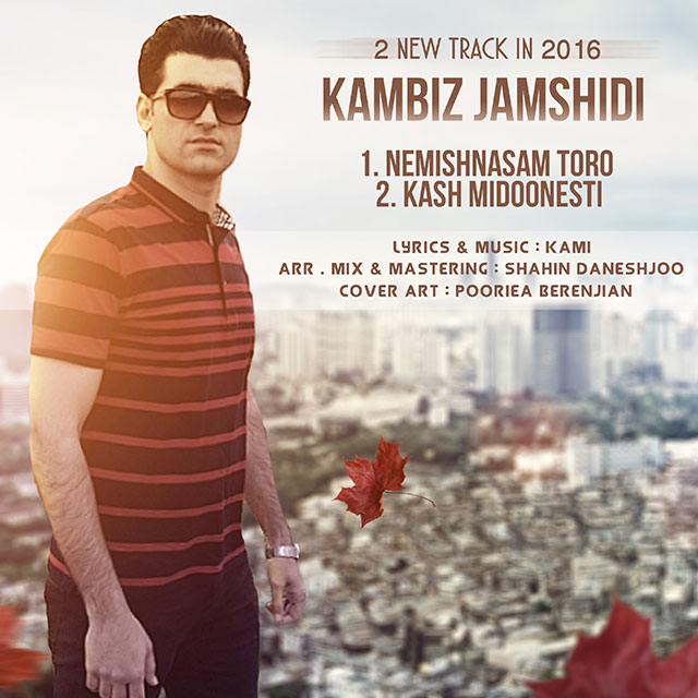 Kambiz Jamshidi – Kash Midoonesti