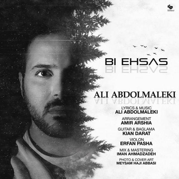 Ali Abdolmaleki - Bi Ehsas.jpg (600×600)