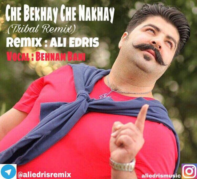 Behnam Bani – Che Bekhay Che Nakhay (Ali Edris Tribal Remix)
