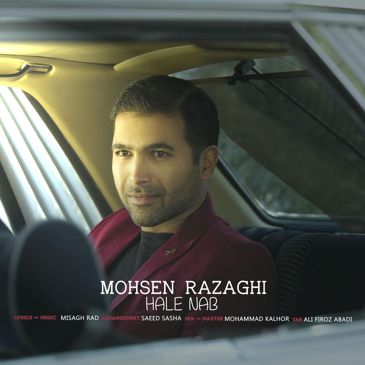 Mohsen Razaghi – Hale Nab
