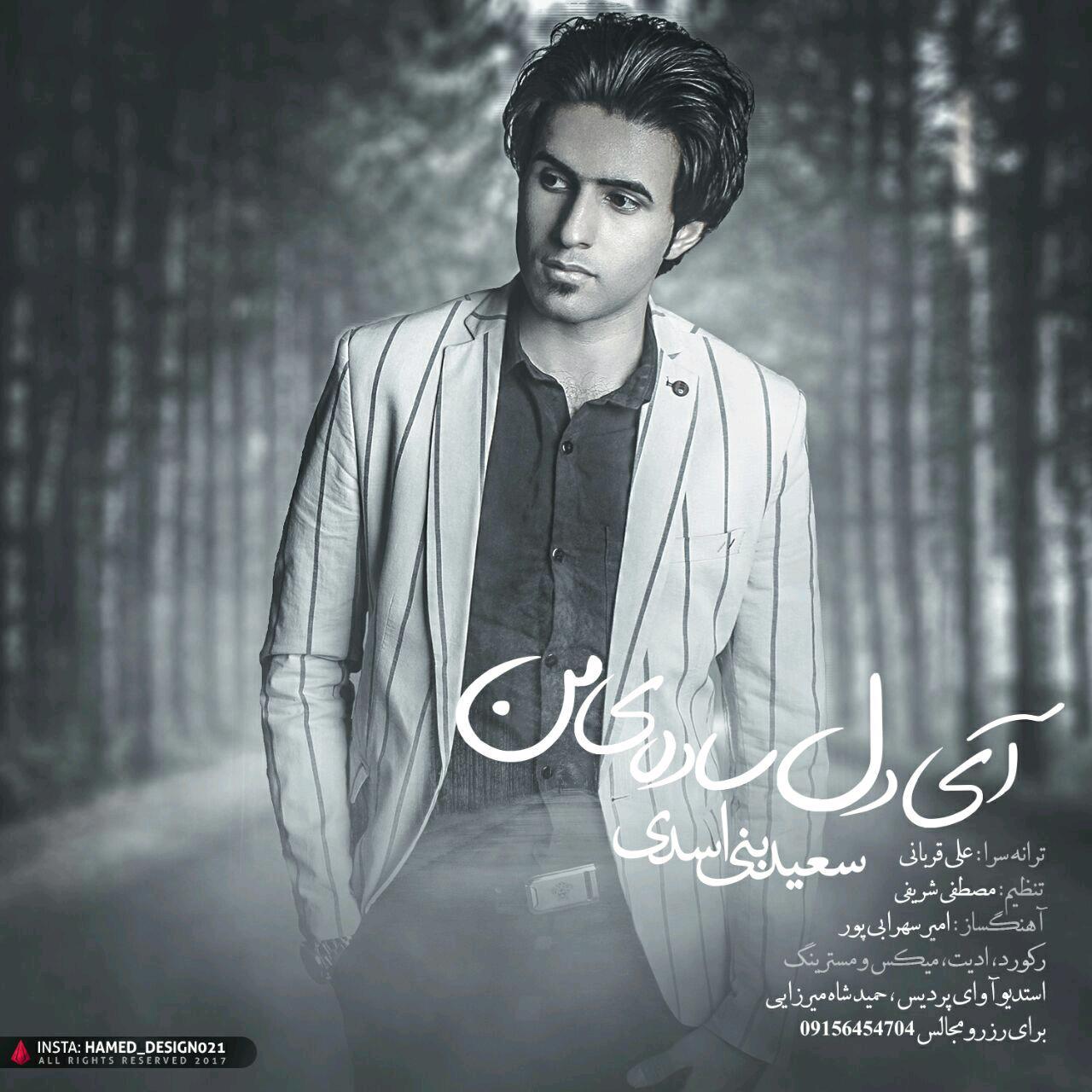 Saeed Bani Asadi – Ay Dele Sadeye Man