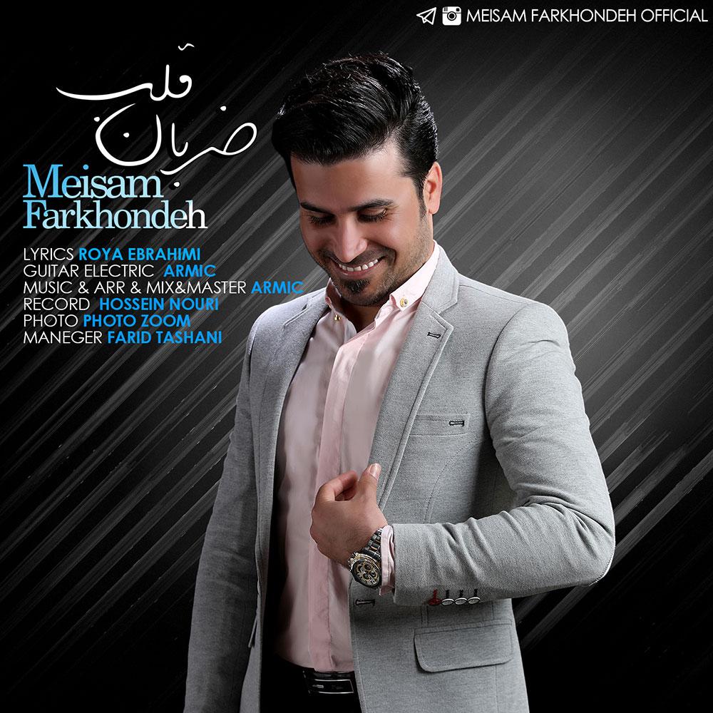 Meysam Farkhondeh – Zaraban Ghalb