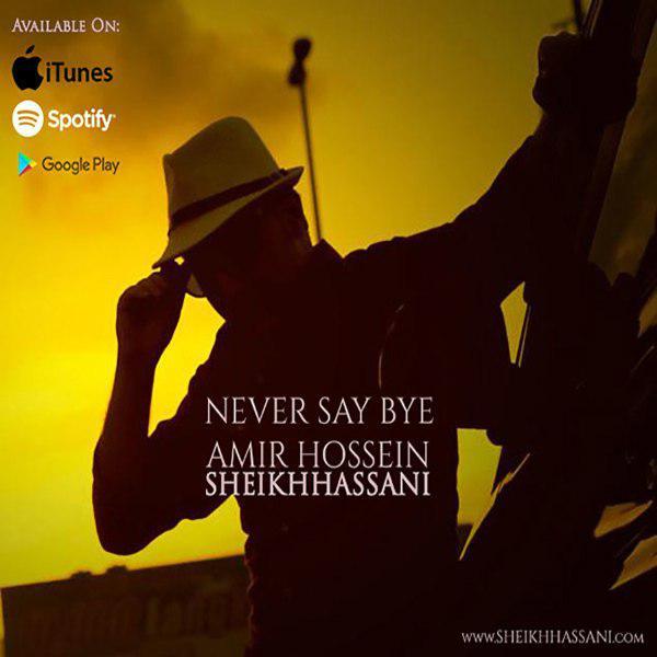 AmirHossein SheikhHassani – Never Say Bye