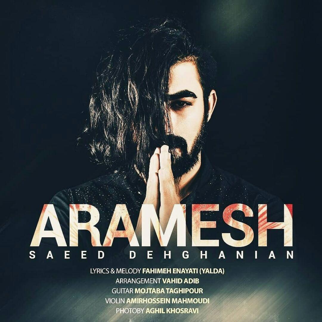 Saeed Dehghanian – Aramesh