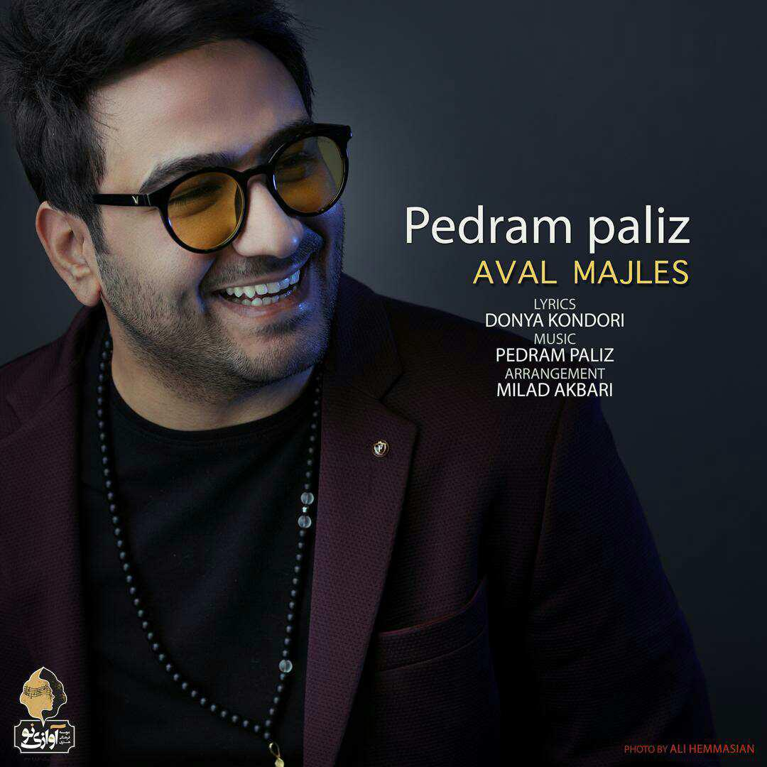 Pedram Paliz – Aval Majles