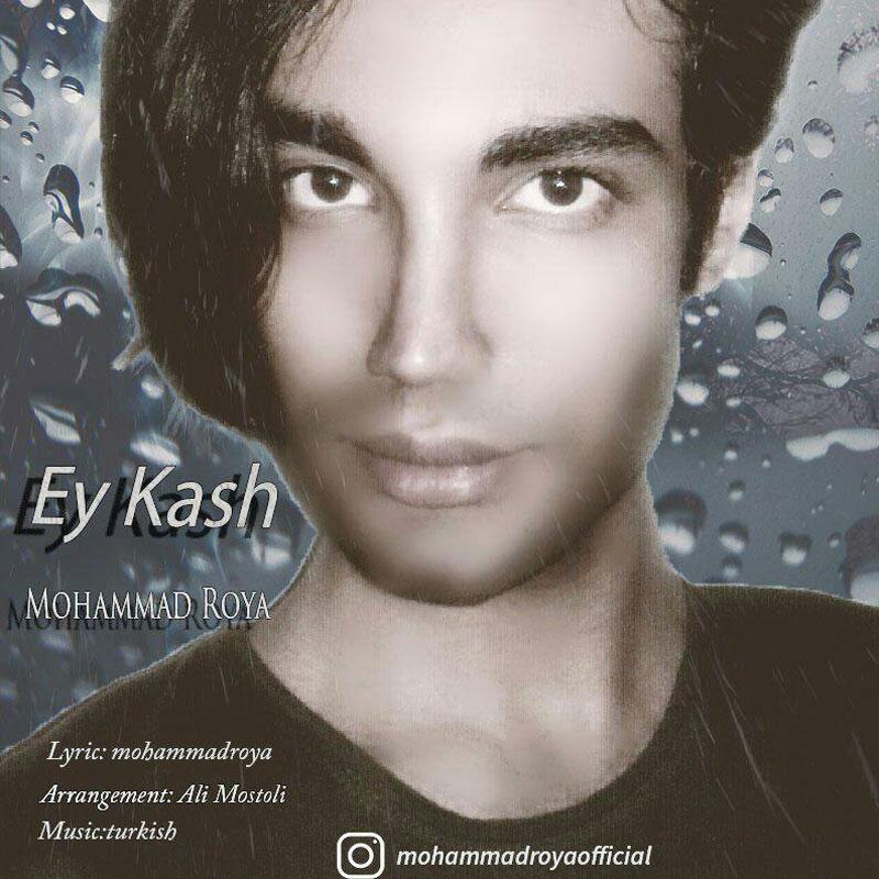 Mohammad Roya – Ey Kash