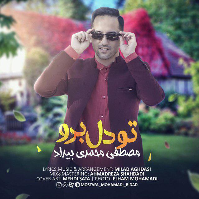Mostafa Mohamadi Bidad – Too Del Boro