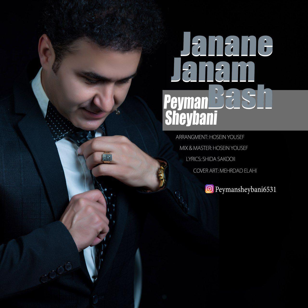 Peyman Sheybani - Janane Janam Bash Music | آهنگ پیمان شیبانی - جانان جانم باش