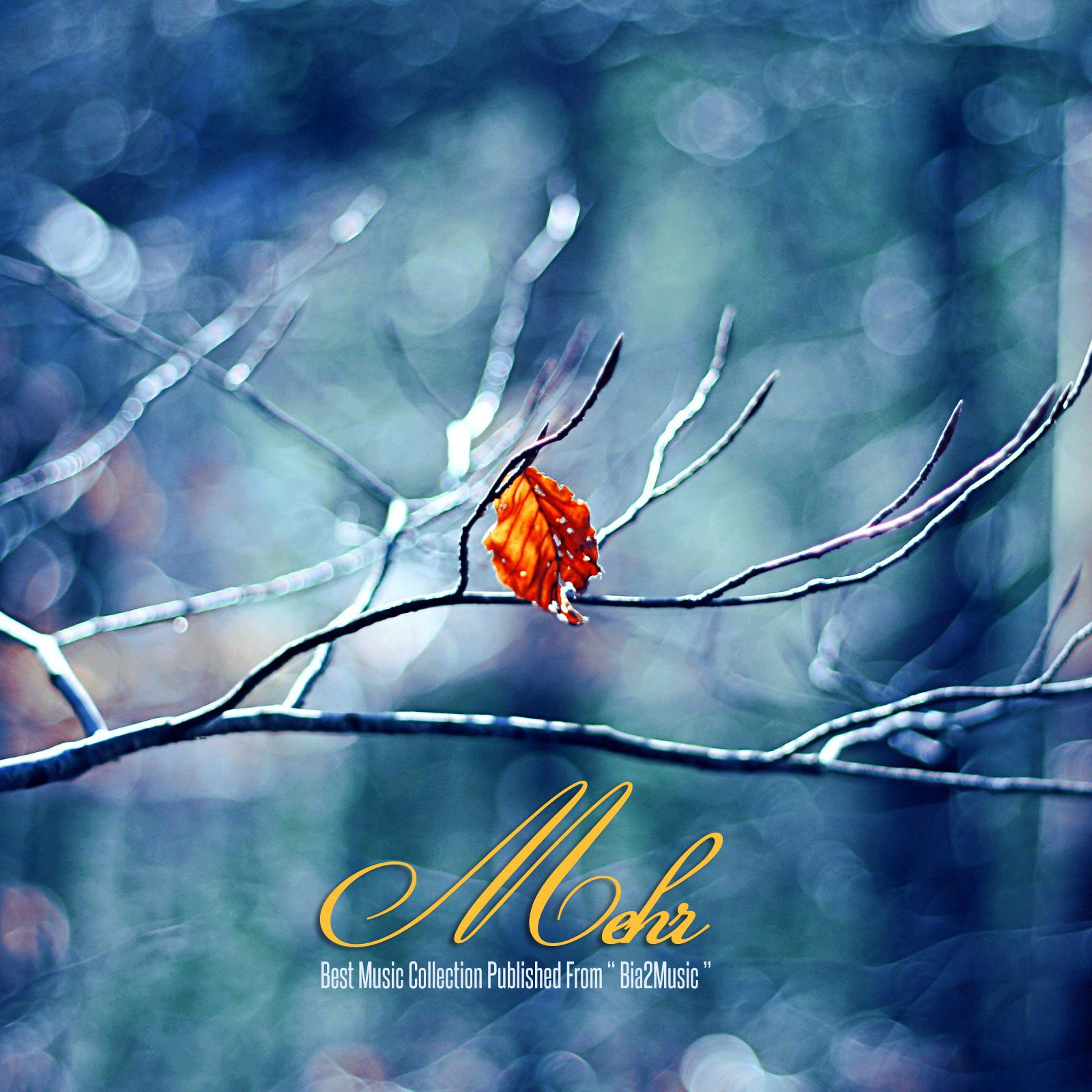 Top Music – Mehr 1395
